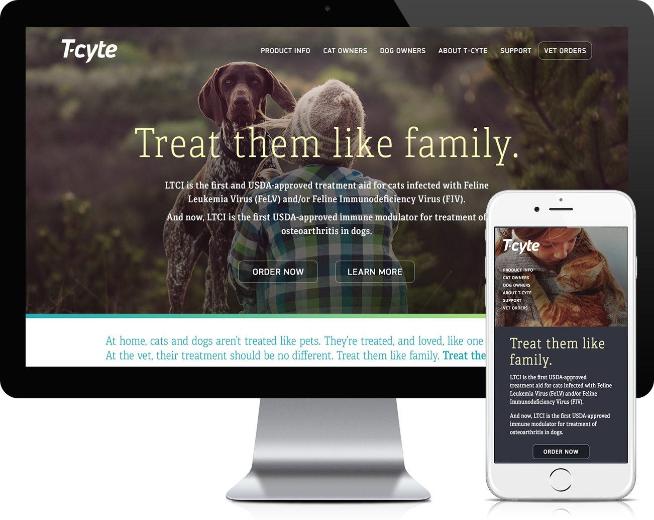 T-Cyte Repsonsive Website